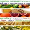 Biodomenica 2014 ad Acireale