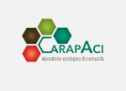 Carapaci lab: rete di ETS per la valorizzazione di Acigreenway