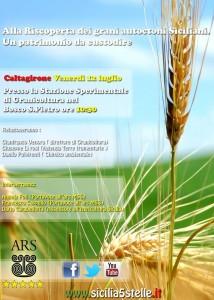 Seminario Alla riscoperta dei grani duri siciliani