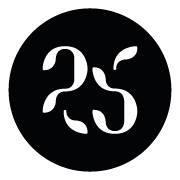 studio 25_la_pubblicita_online_e_giovane