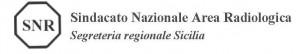 conferenza_del_fassid_snr_sulle__prestazioni_sanitarie_