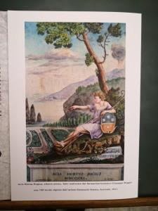 francobollo 8